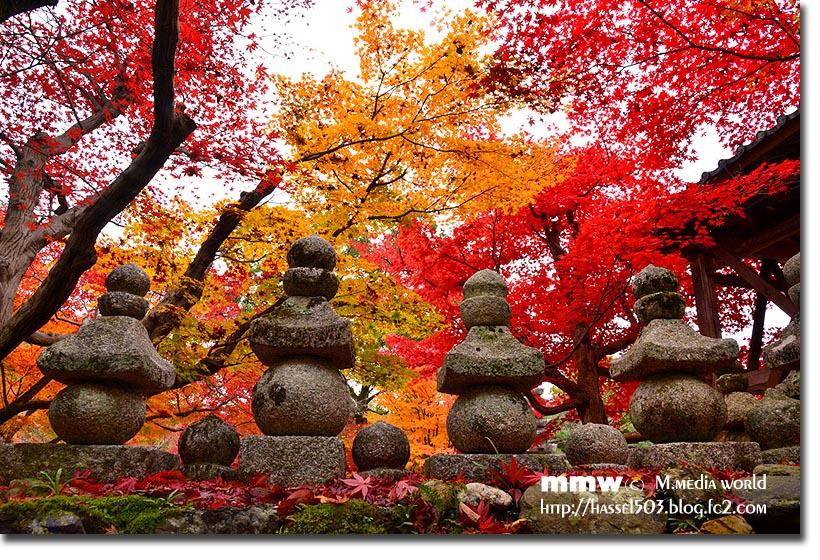 kyoto_au15.jpg