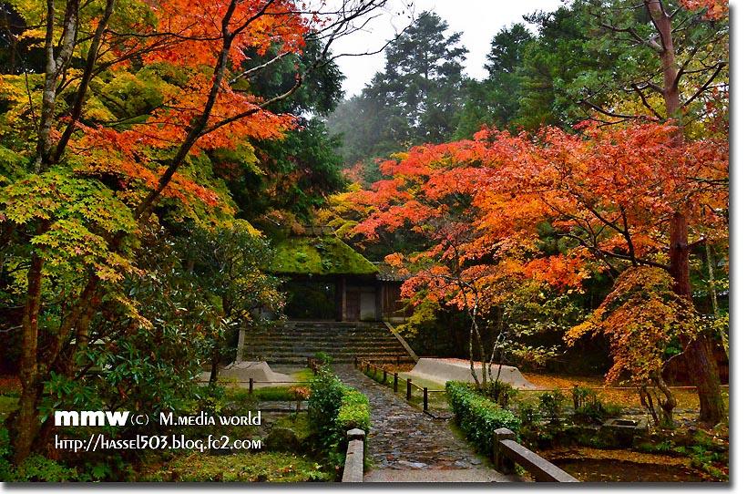 kyoto_au21.jpg