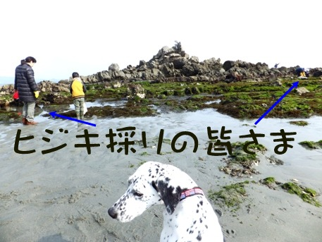 blog_0201_134145.jpg