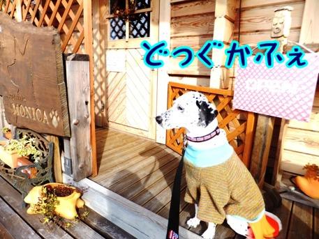 blog_0201_150544.jpg