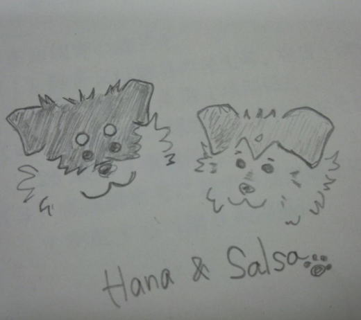Hana&Salsa