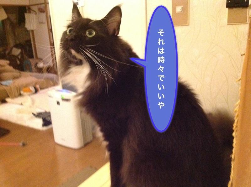 image_20121226052805.jpg
