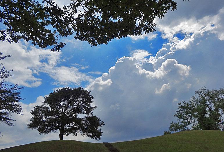 120901入道雲と京急3