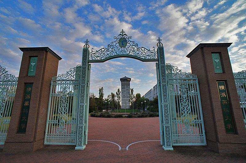 121103横浜薬科大学1