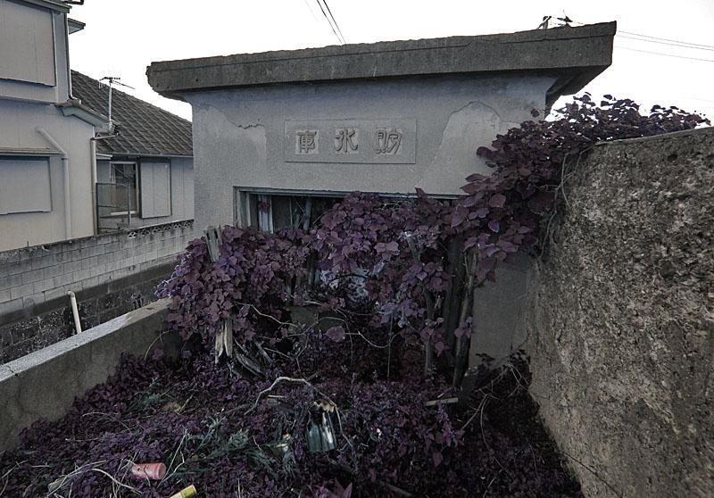 121125和田長浦貯氷庫7