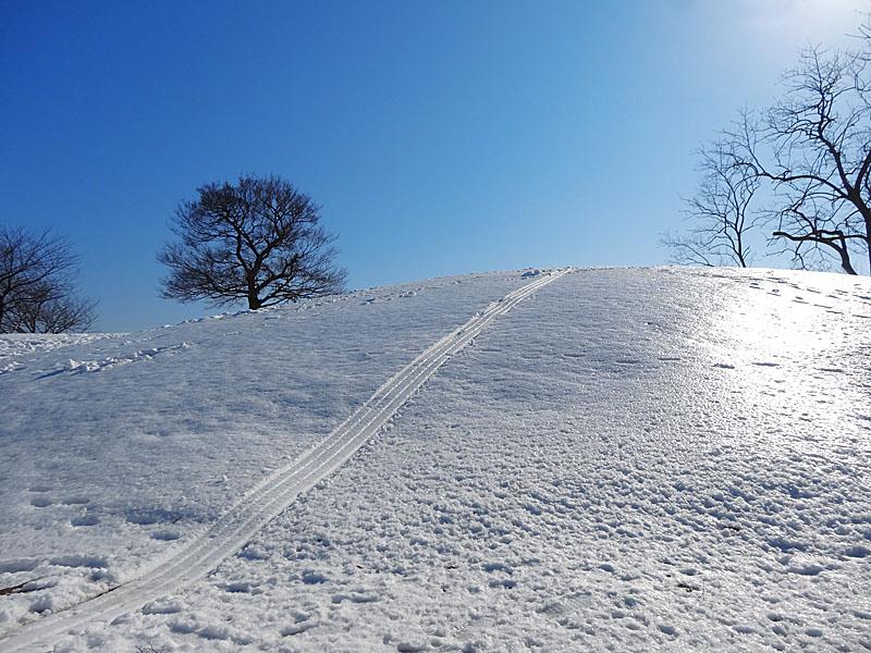 130115雪の榎の丘1