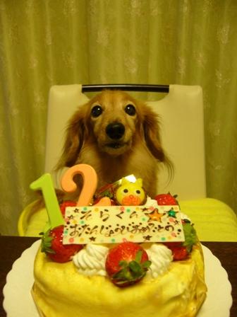 12歳誕生日