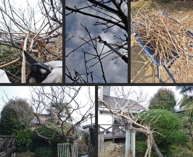 2014-01-22 2014-01-22 004 016-horz-vert