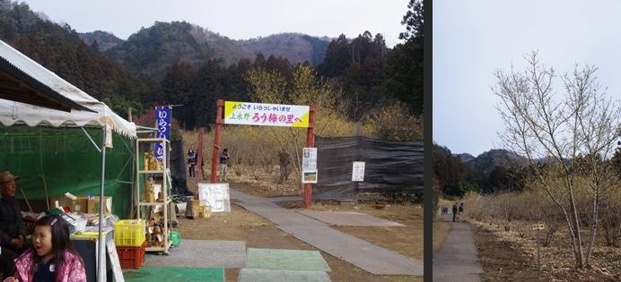 2014-01-25 2014-01-25 002 114-horz-horz