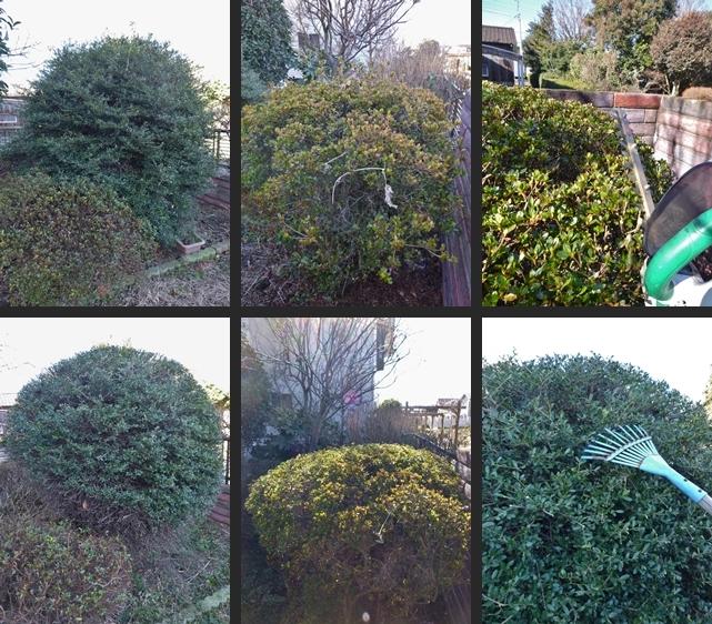 2014-01-31 2014-01-31 001 016-horz-vert