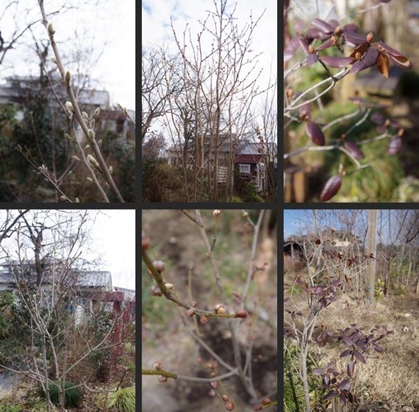 2014-02-02 2014-02-02 001 062-horz-vert