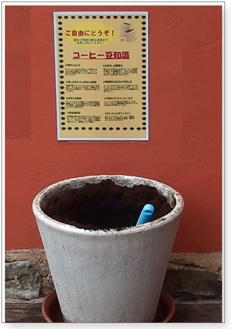オランダ屋コーヒーの出し殻を肥料に