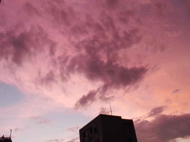 2012.7.17 Tokyo6