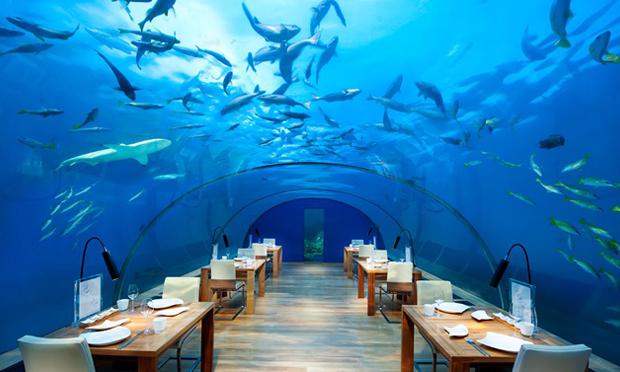 1_undersea_restaurant[1]