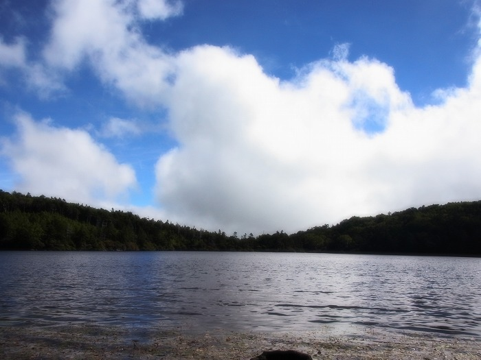 白駒の池 047