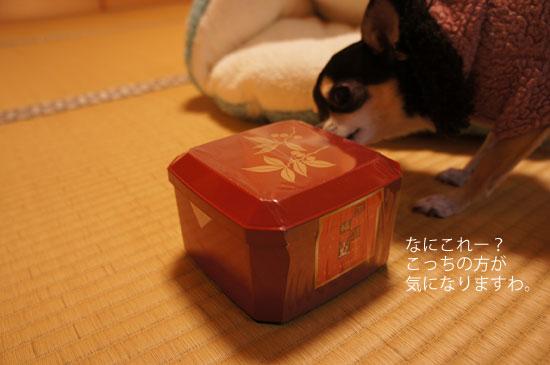 お菓子土産1