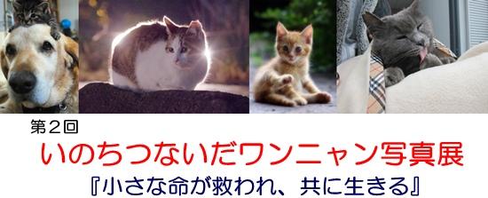 201206290646142ca.jpg