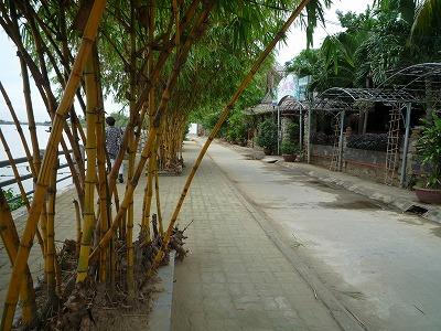 ベトナム012、9・1、ツゥボン川沿い、P1030512