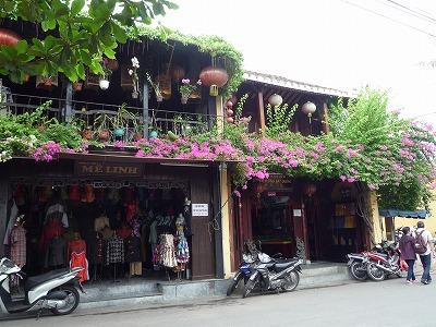 ベトナム012、9・1、ホイアン日本人街のブーゲンビリアP1030523