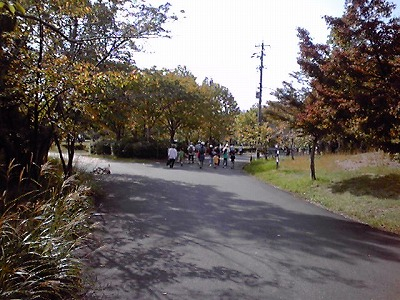 s-歩け帰路2、KC3T0226