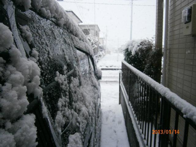 2013初雪1