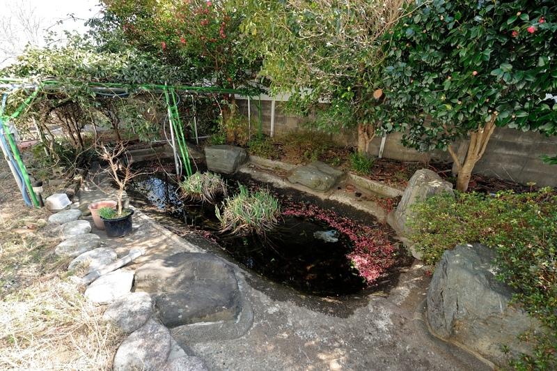 水が涸れかけている池