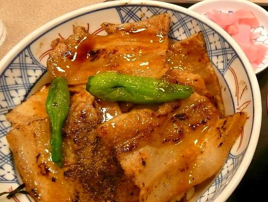 フジザクラポークの豚丼