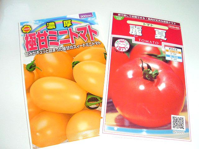 2013年のトマト品種