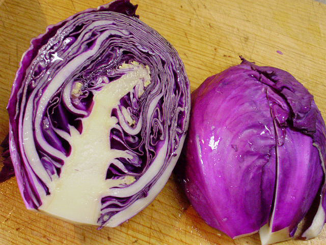 紫キャベツの断面