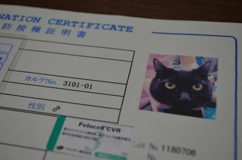 DSC_0069_convert_20120902005727.jpg