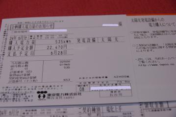 IMGP6586.jpg