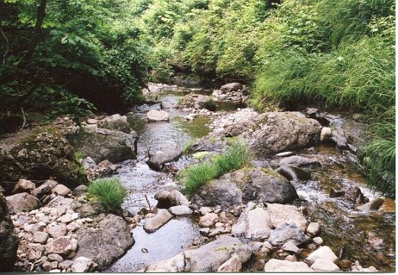 下二股川3