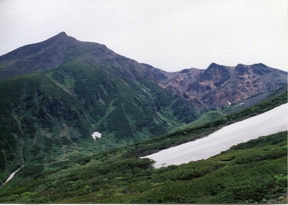 勝瑛の滝 トラ
