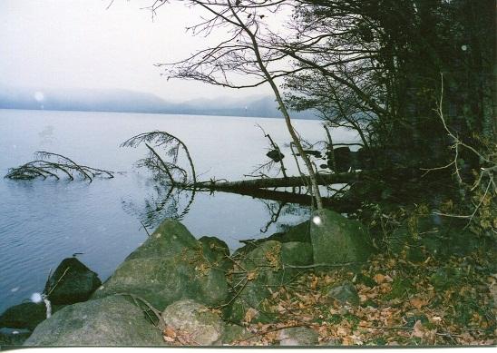 支笏湖トマリ (2)