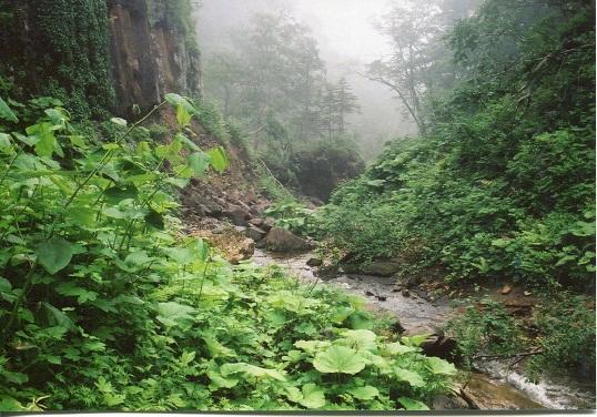 クテクン滝 (1)