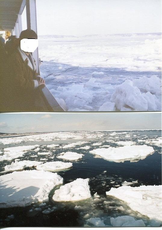 流氷 (3)