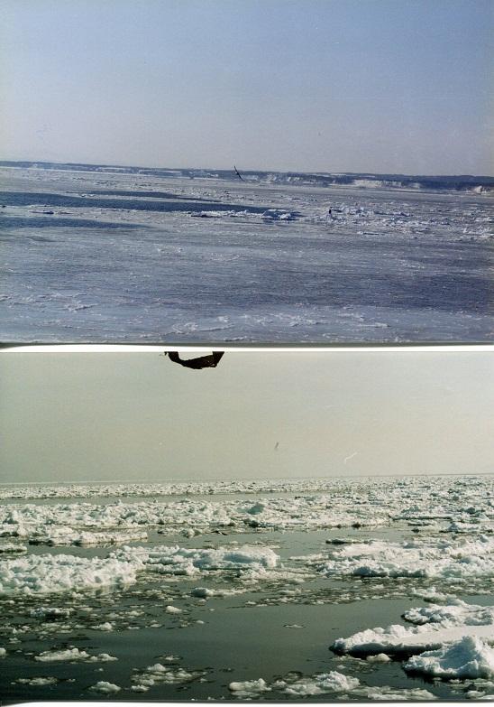 流氷 (5)