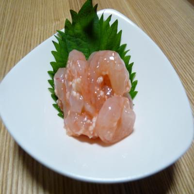 2012.6.1お魚1