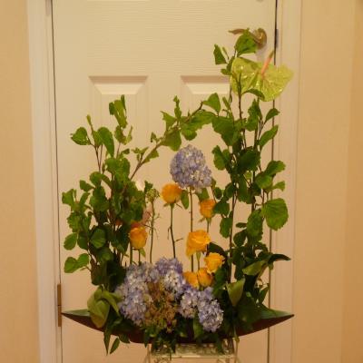2012.6.6お花