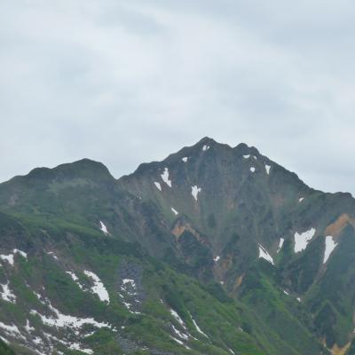 2012.6.17富良野岳1