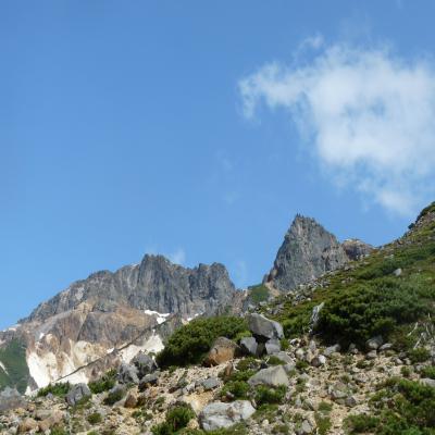 2012.6.17富良野岳20