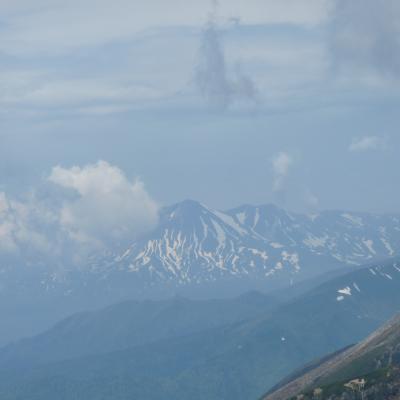 2012.6.17富良野岳19