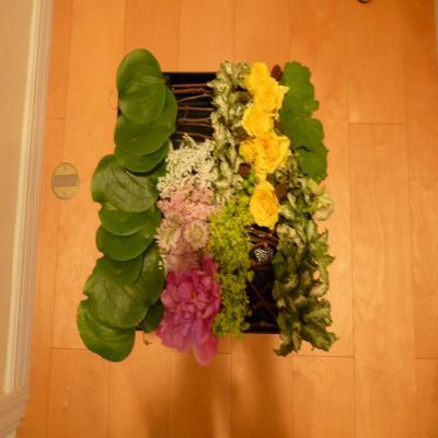 2012.6.200お花1
