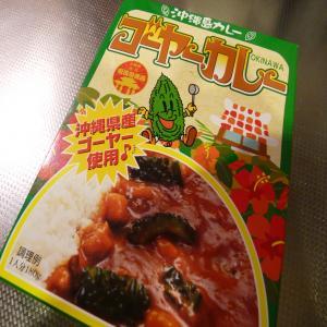 2012.1.10ご当地カレー