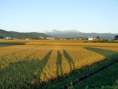 2012.9.6秋の味覚2