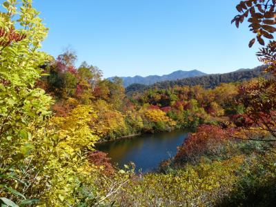 2012.10.11高原沼5