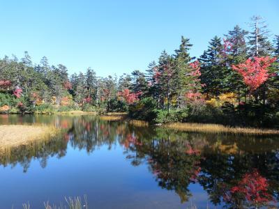 2012.10.11高原沼3