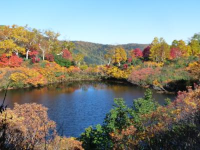 2012.10.11高原沼6