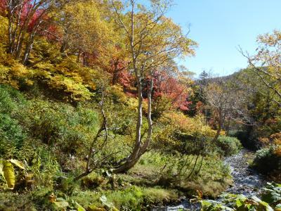 2012.10.11高原沼11