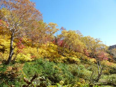 2012.10.11高原沼9